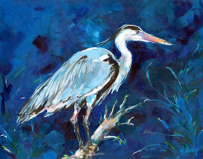 Midnight Heron